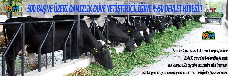 damizlik-duve-destegi-2016